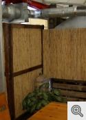 Reeds indoor decoration