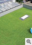 """""""Intensīvie zaļie jumti"""""""